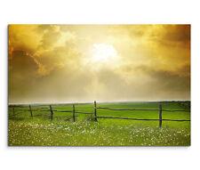 120x80cm Leinwandbild auf Keilrahmen Sonnenuntergang Blumenwiese Sommer