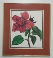 """Hibiscus"" Signed Watercolor Limited Edition Print Painting by Rebecca Oliver"