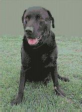 "Black Labrador Counted Cross Stitch Kit 9""x 12.5"" D2140"