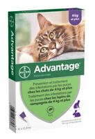 Bayer ADVANTAGE PURPLE for Cats Over 9 lbs (6-Pack)