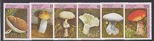 GUINEA :1996 Fungi set SG1712-7  unmounted mint
