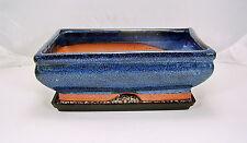 Bonsai Schale Anzuchtschale blau 1223 + Untersetzer Ficus Ulme Ahorn 24x16x7,5