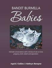 Bandit Burmilla Babies: Intimate Conversations with a Family of Cats on Lov.