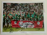 """Signed Celtic Title Winning 1st 9 in a Row Team Photo 16"""" x 12"""" Brown, Commons"""