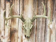 """19""""H Antler Skull Buck Deer Head Bust Wall Hanging Figurine Home Decor Plaque"""