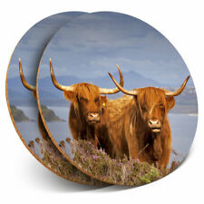2 x Coasters - Brown Highland Cows Scotland Home Gift #16313
