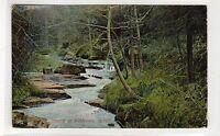 STREAM AT KILDONAN: Isle of Arran postcard (C26561)