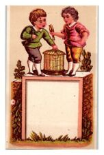 Two Boys on Wall with Pet Bird and Cage, Miniature Victorian Trade Card