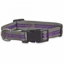 Good2Go Reflective Adjustable Dog Collar in Purple, Small By: Good2Go