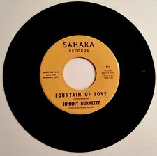 JOHNNY BURNETTE ROCKABILLY RARE 45 WHAT A SUMMER DAY/FOUNTAIN OF LOVE