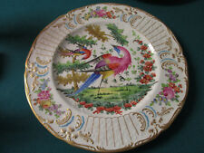 DRESDEN POTTERY CHINA COLLECTIBLE PLATE EAST LIVERPOOL OHIO 1882 - 1925 ANTIQUE