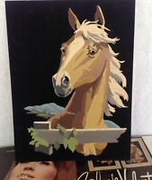 Black Velvet Horse paint by numbers art original oil painting BV702 vintage 1960