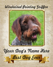 """Wirehaired Pointing Griffon Dog Personalized 8""""x10"""" Photo See Video"""