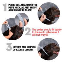 1XPet Dog Collar Anti Flea Ticks Mosquitoes Outdoor Protective Adjustable dA8A