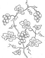Vintage Visage iron on embroidery transfer-Victoriana series-grapes on the vine