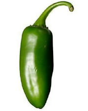 400 Hot JALAPENO PEPPER Capsicum Vegetable Seeds + Gift