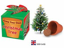 GROW YOUR OWN CHRISTMAS TREE KIT Kids Child Stocking Filler Plant Pot Box Gift