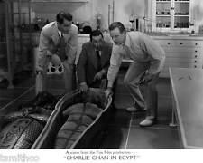 Charlie Chan In Egypt Warner Oland 8x10 Photo 033