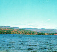 Squam Lake Landscape Horizon Water Scene Trees Sky Nature NH Vintage Postcard