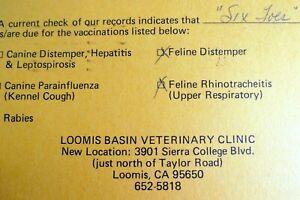 Pet Important Vaccine Reminder Postcard Feline Loomis Basin veterinary USA 1978