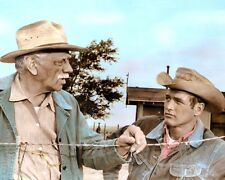 "PAUL NEWMAN MELVYN DOUGLAS HUD 1963 ACTORS 8x10"" HAND COLOR TINTED PHOTO"