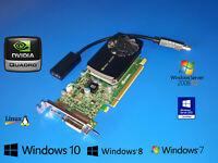 LENOVO ThinkCentre M73e M82 M83 M90p M91p M92p M93p HDMI DVI DP Video Card