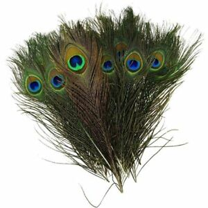 """10/30 100% Real Natural Peacock Feathers 10-12"""" Stage Costume Makeup Tool Lots"""