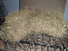 (€ 13,80 / kg) 500g   Palmfaser / gezupft / Polstermaterial