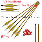 Archery Carbon Arrows Spine 500 Carbon Shaft with Turkey Feather & Removable Tip