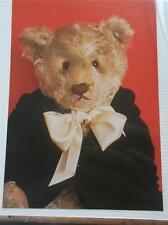 Vintage Teddy Bear Postcard Charlie Real Photo VGC Unused Bialosky New York