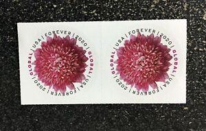 2020USA #5460 Global Forever Rate - Chrysanthemum - Block of 2 Mint sase postage
