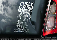CURLY COATED RETRIEVER Car Sticker, Dog Window Decal Bumper Sign Pet Gift - V01
