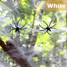 Stretchable Spider Web Halloween Decoration - Pack of 2
