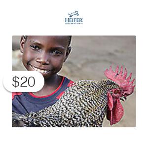 $20 Charitable Donation HEIFER INTERNATIONAL: Flock of Chicks