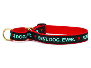 Dog Martingale Collar - Up Country - Made In USA - Best Dog Ever - S, M, L, XL
