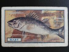 No.13 THE BASS - Fish by Godfrey Phillips 1924
