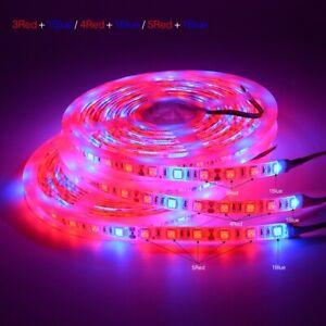 5M Led Pflanzenlampe Sparke Led Planzenlicht Strip Streifen Band Pflanzenlicht