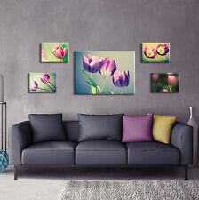 SET (5 teilig) CANVAS Leinwand Poster Bilder Blumen Tulpen Pflanzen 3FX2670S14