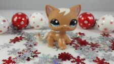 Littlest Pet Shop Exclusive Carry Case Brown and Tan Short Hair Cat #1170 Rare