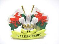 Wales Magnet Cymru Drachen Wappen Poly Souvenir Great Britain Neu