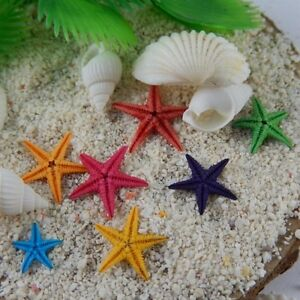 20 Pieces Colorful Natural Starfish Mini Crafts Decorations For Micro Landscape