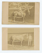 1867 CDV's: TWO PHOTOS WEST CHESTER PA MAN & HORSE