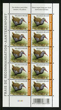 Belgium 2017 MNH Water Rail Recorded Signed For 10v M/S Birds Stamps