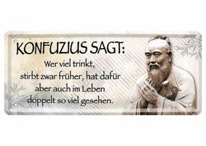 Blechschild lustige Sprüche Deko Schild Spruch Weißheit Leben Konfusius 28x12cm