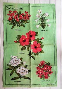 Vintage BERMUDA SOUVENIR Print Kitchen Hand Towel 1950s Irish Linen Green