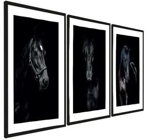 Set of 3 Framed Prints Posters Animals Black Horses Modern Wall Art A3 30x40 cm