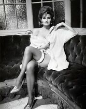 RAQUEL WELCH 8X10 GLOSSY PHOTO PICTURE IMAGE #14