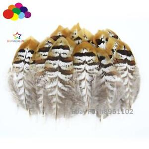 Pretty gold 10-100 PCS natural Pheasant tip Feathers 5-15 cm/2-6 inches Diy