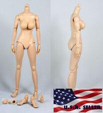 1/6 Scale Female Nude Figure Body N001 Large Breast Pale Skin Tone