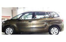 Zierleiste Seitenschutz Türschutz für Citroen C4 Grand Picasso Hatchback 2013-